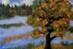 Efterårs træ ved sø